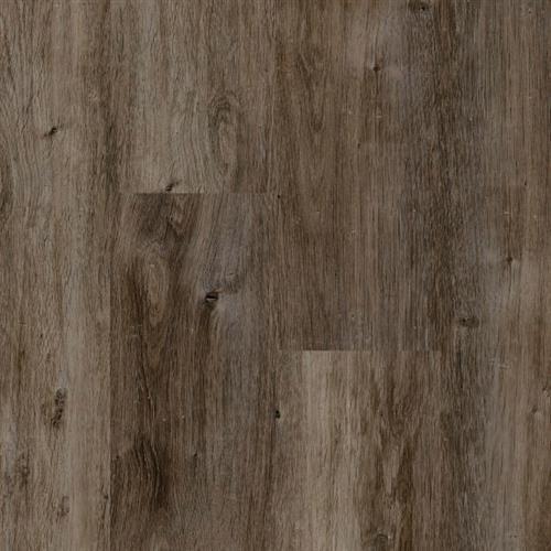 La Costa Driftwood