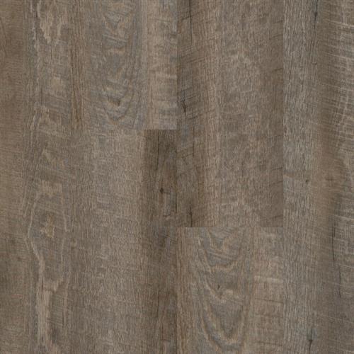 Oak Anise
