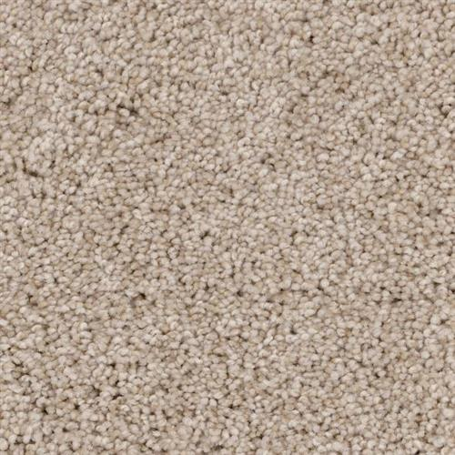 Room Scene of Shoreline - Carpet by Phenix Flooring