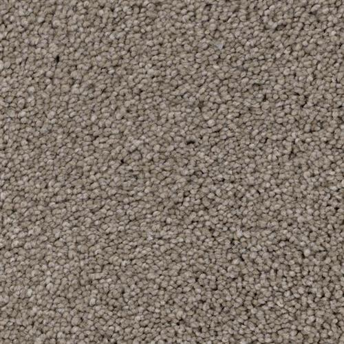 Shoreline in Incline - Carpet by Phenix Flooring