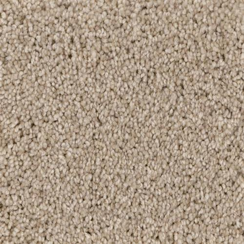 Shoreline in Sand Dune - Carpet by Phenix Flooring