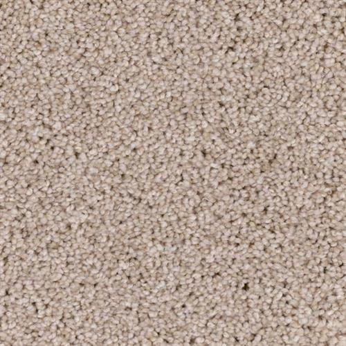 Shoreline in Sands Of Time - Carpet by Phenix Flooring