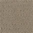 Carpet Assurance View 105 thumbnail #1