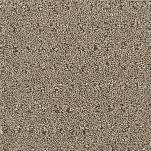 Carpet Assurance View 105 main image