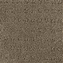 Carpet Assurance Theory 106 thumbnail #1