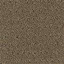 Carpet Assurance Composure 107 thumbnail #1