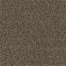 Carpet Assurance Impression 108 thumbnail #1