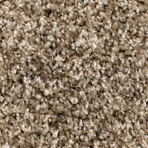 Carpet AnchorBay12 N164-202-AB-1200 Willow
