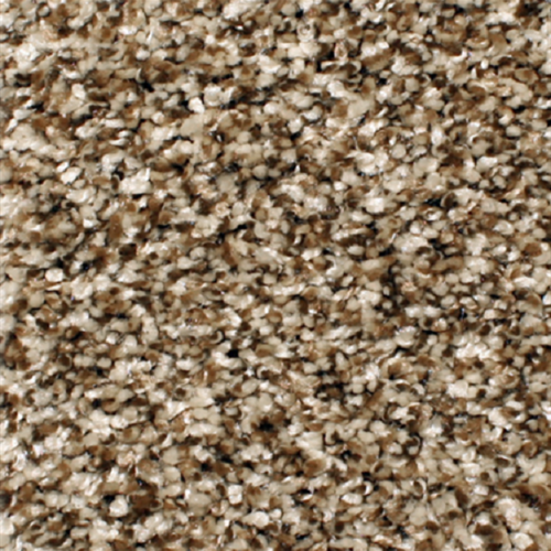 Carpet Anchor Bay 12' Dried Herb 203 main image
