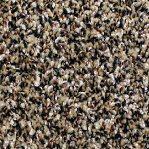 Carpet AnchorBay12 N164-204-AB-1200 Beechnet