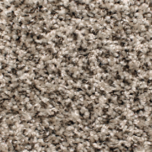 Carpet AnchorBay12 N164-205-AB-1200 SilverShadow