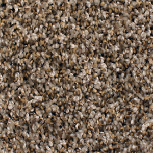 Carpet AnchorBay12 N164-208-AB-1200 Nutshell