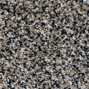 Carpet AnchorBay12 N164-209-AB-1200 RichStraw