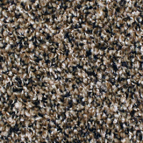 Carpet Anchor Bay 12' Spice Bay 211 main image
