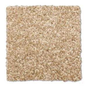Carpet Capstone N217 Canvas