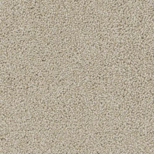 Ovation in Rave - Carpet by Phenix Flooring