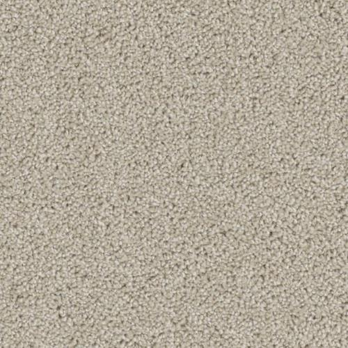 Ovation in Tumble - Carpet by Phenix Flooring