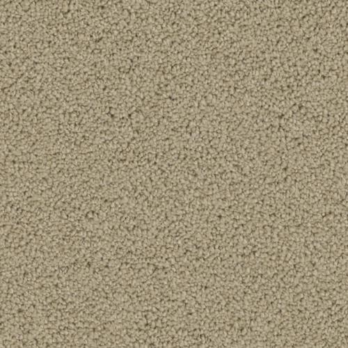 Ovation in Curtain Call - Carpet by Phenix Flooring