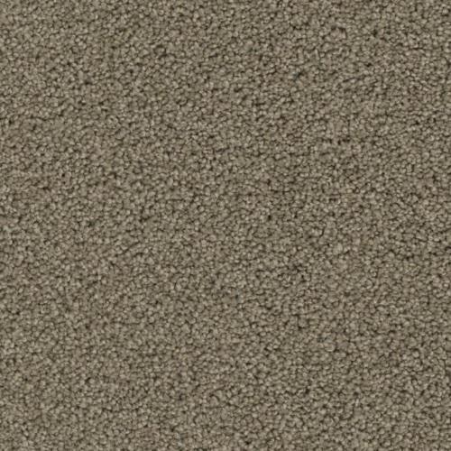 Ovation in Celebration - Carpet by Phenix Flooring