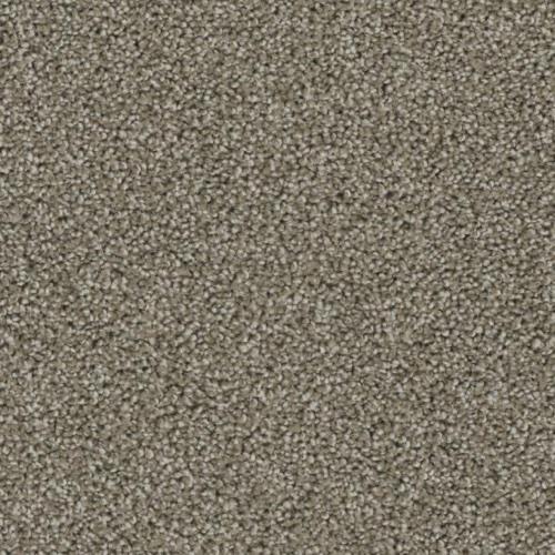 Room Scene of Ovation - Carpet by Phenix Flooring