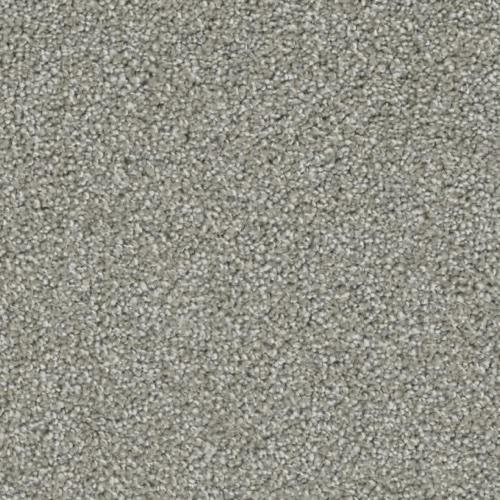 Ovation in Applause - Carpet by Phenix Flooring
