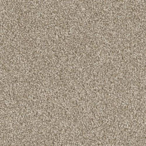 Resourceful in Applied - Carpet by Phenix Flooring