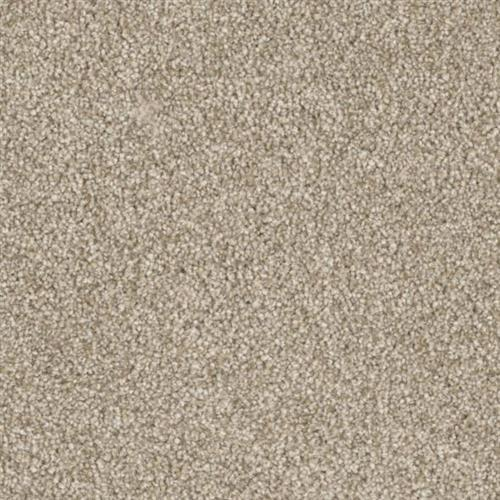 Resourceful in Aware - Carpet by Phenix Flooring