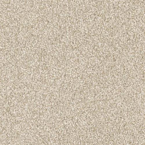 Resourceful in Balanced - Carpet by Phenix Flooring