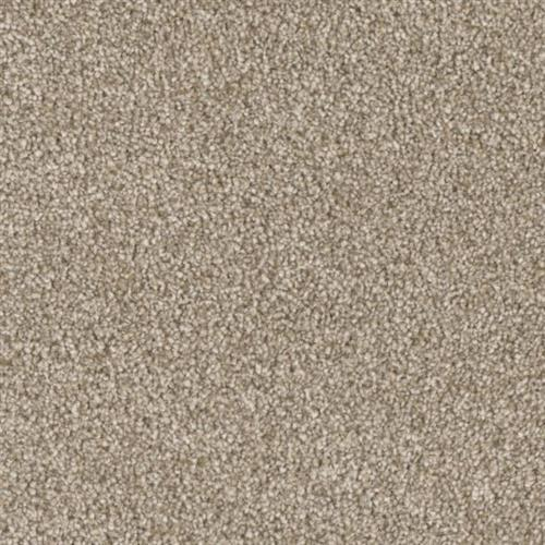 Resourceful in Clever - Carpet by Phenix Flooring