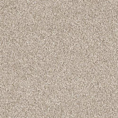 Resourceful in Coherent - Carpet by Phenix Flooring