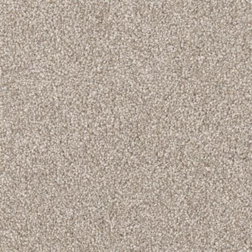 Resourceful in Composed - Carpet by Phenix Flooring