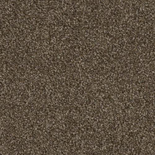 Resourceful in Kosher - Carpet by Phenix Flooring