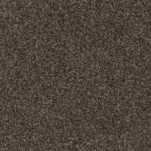 Resourceful in Logical - Carpet by Phenix Flooring
