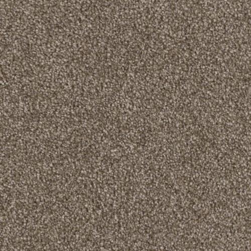 Resourceful in Measured - Carpet by Phenix Flooring