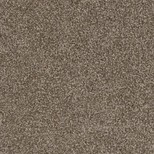 Resourceful in Precise - Carpet by Phenix Flooring