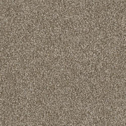 Resourceful in Routine - Carpet by Phenix Flooring