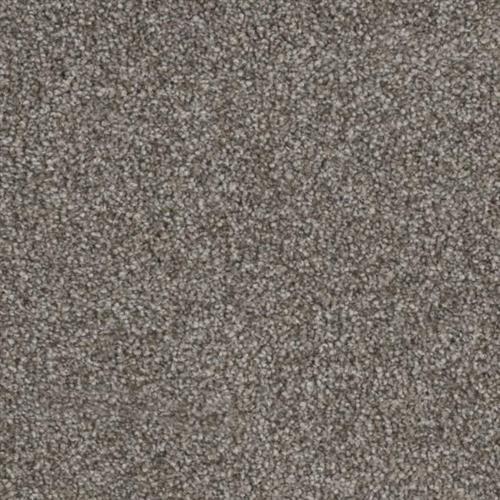 Resourceful in Sharp - Carpet by Phenix Flooring