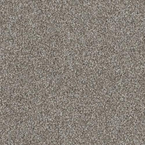 Resourceful in Stated - Carpet by Phenix Flooring