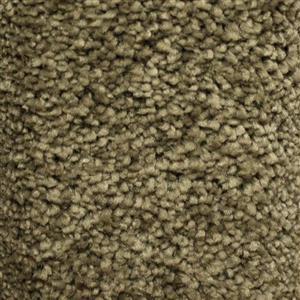 Carpet BeautifulIntuition N181-3533-AB-1200 Restful