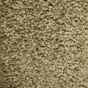 Carpet BeautifulIntuition N181-3652-AB-1200 ParkPlace