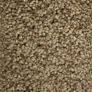 Carpet BeautifulIntuition N181-641-AB-1200 NorthStar