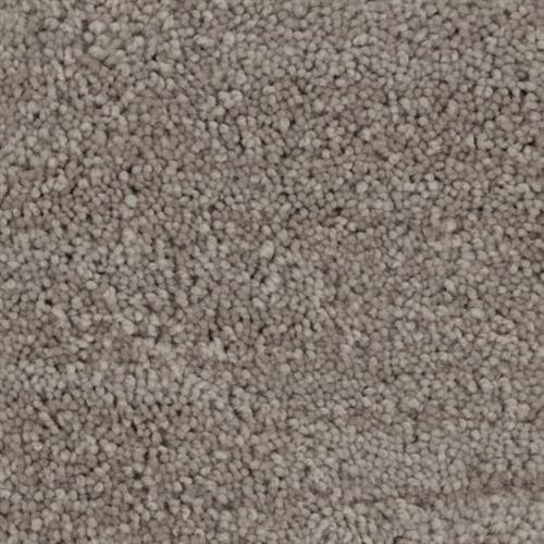 Debonair Polished 723