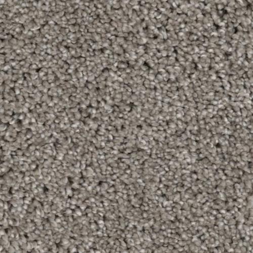 Stoneridge Ash 06