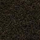 Carpet Alpine Lake Sandy Path 1005 thumbnail #1