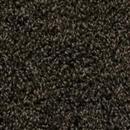 Carpet Alpine Lake Mink Frost 1006 thumbnail #1