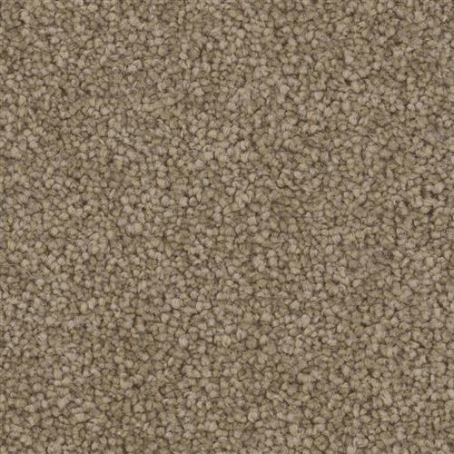 Phenix Revelry Cloud Nine Carpet Turnersville New