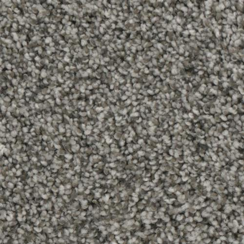 Charisma in Horizon - Carpet by Phenix Flooring