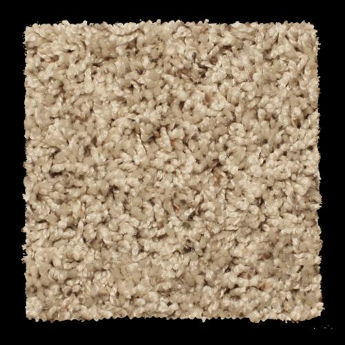 Princeton Golden Wheat 1013