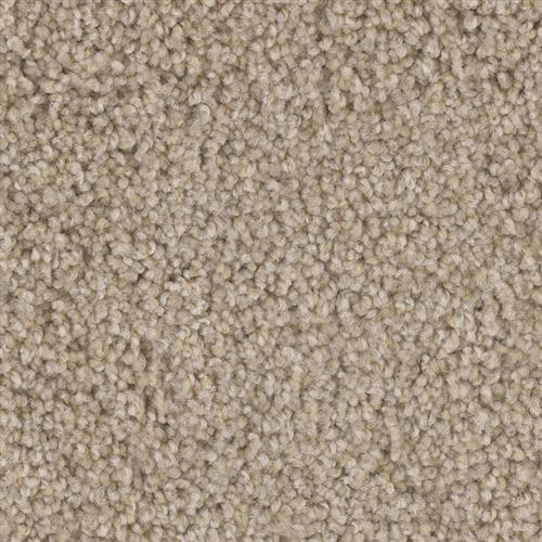 ProductVariant swatch small for Pioneer Court flooring product