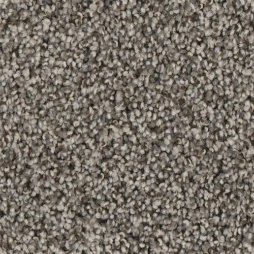 Fascination in Ember - Carpet by Phenix Flooring